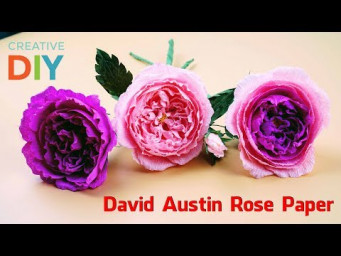 How To Make David Austin Rose Paper Easy With Crepe Paper | Creative DIY